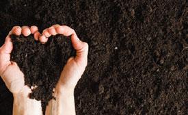 jardinerie du carrefour - Terre