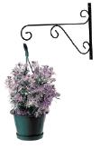 jardinerie du carrefour - support-pour-plante